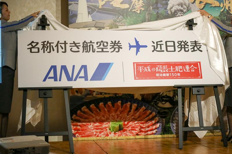 近日詳細を発表するという「名称付き航空券」は価格面などで魅力的なものにするという