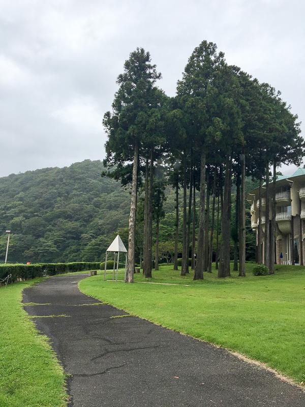 ホテル庭園の散歩道
