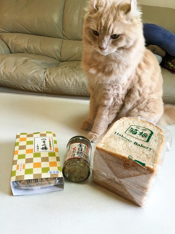 つまみ揚げ、金目鯛の生茶漬け、箱根ベーカリーのふすま入り食パン。つまみ揚げを狙って離れない我が家の猫