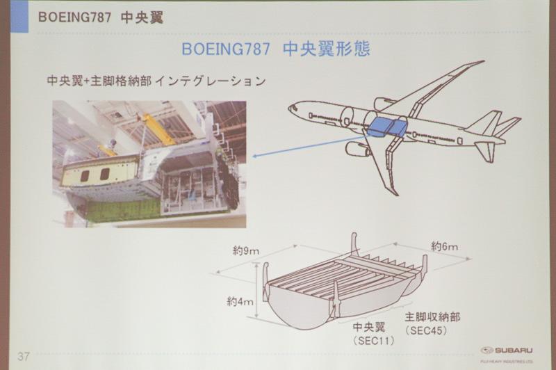 中央翼の形態