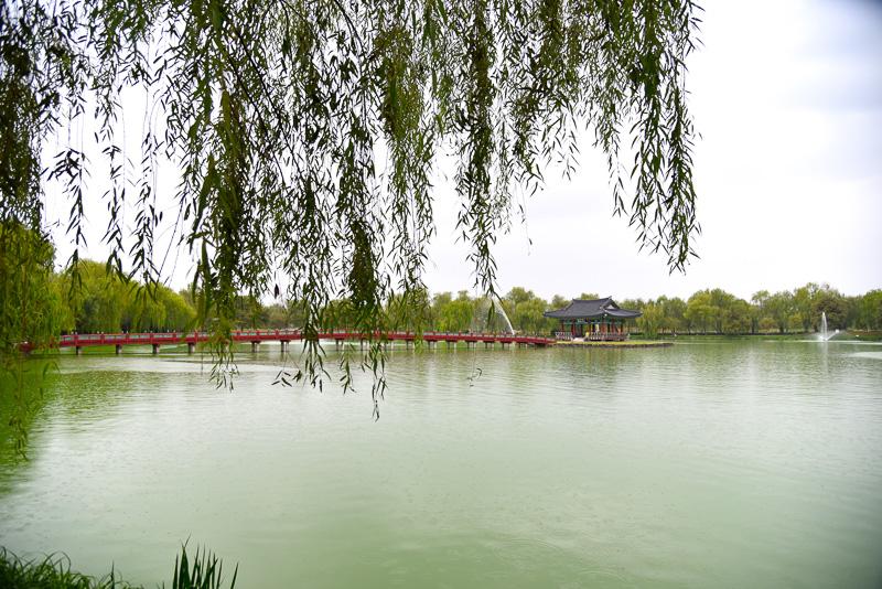 噴水がいたるところであがり、優雅な雰囲気の「宮南池」