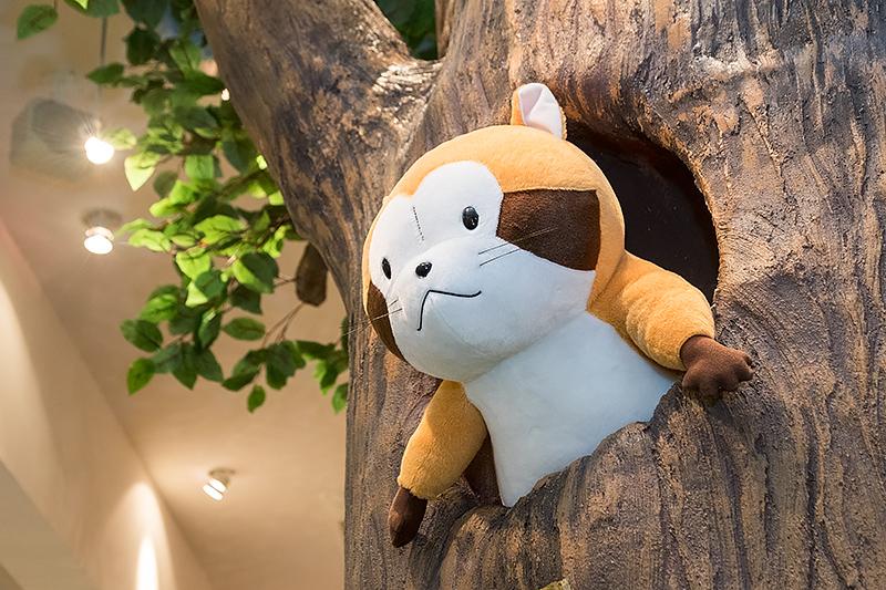 木から顔を覗かせるラスカル