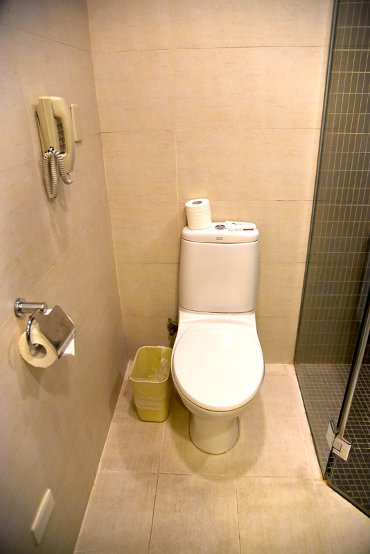 バスルームも広い。トイレは普通のタイプ。シャワーとバスタブが分かれている。温泉が出るのもポイントが高い