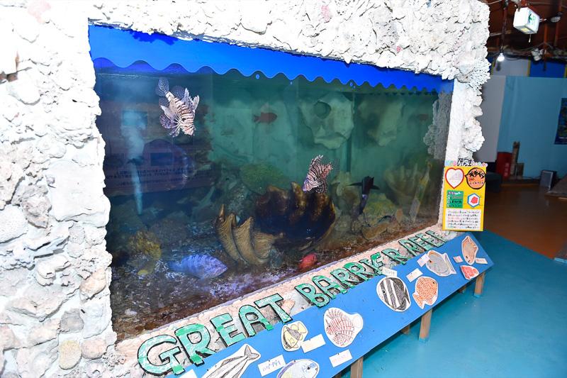 世界中のさまざまなエリアに生息している魚の住環境までを再現している館内