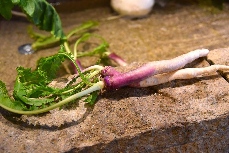 近江伝統野菜も並べられており、実際の大きさや色合いを見ることができる