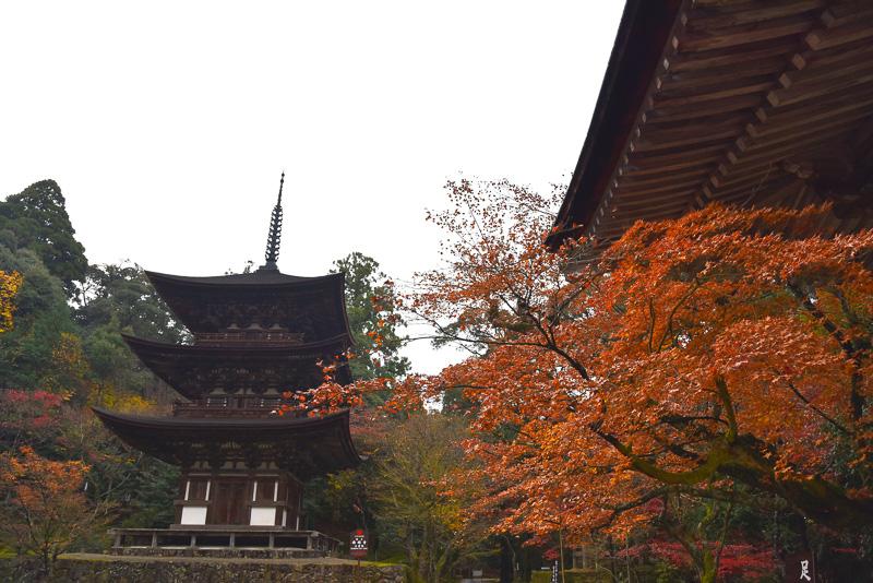 国宝の三重塔。総檜で作られている