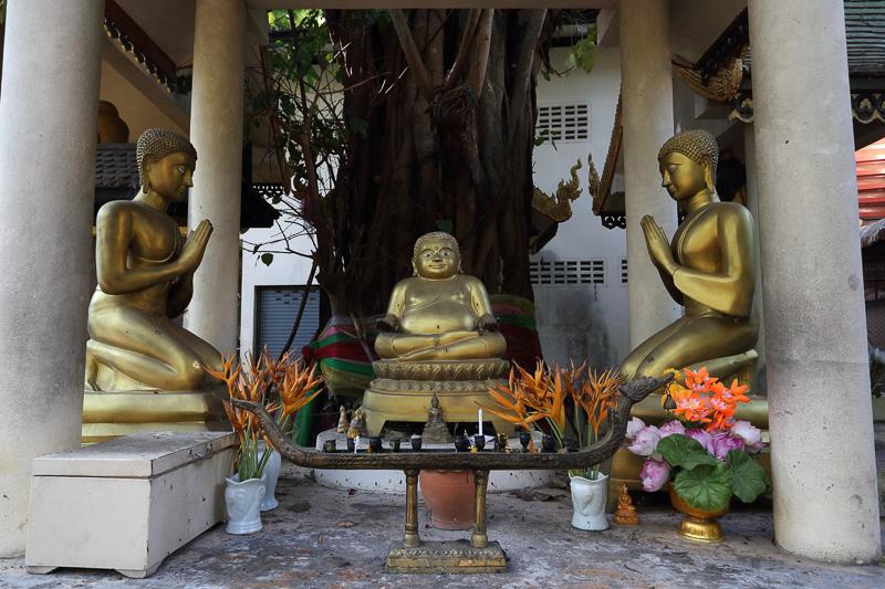 敷地内にはさまざまな仏像が並んでいる