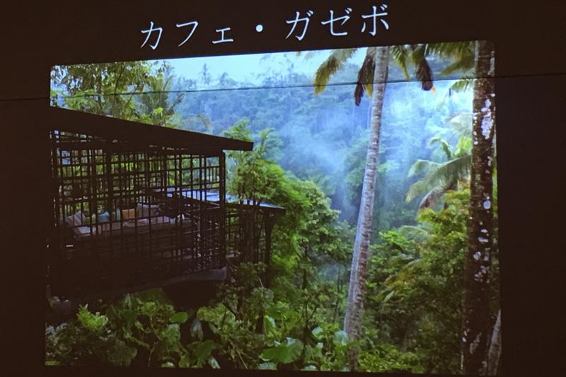 「ジャングルのなかで浮かんでいるような感覚を楽しめます」と伊藤靖兼氏が語るカフェ・ガゼボ(東屋)