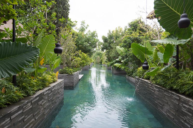 エメラルドグリーンのプールと、木々のコントラストが自然の恵みを感じさせる空間を生んでいる