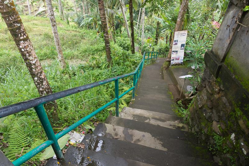 入り口から、まずは谷を下りていく。帰りはこの階段を上る必要があるのでお忘れなく