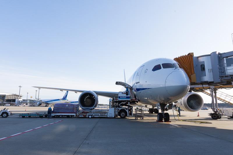Trent 1000-Lを搭載するANAのボーイング 787-8型機、JA820Aの機体
