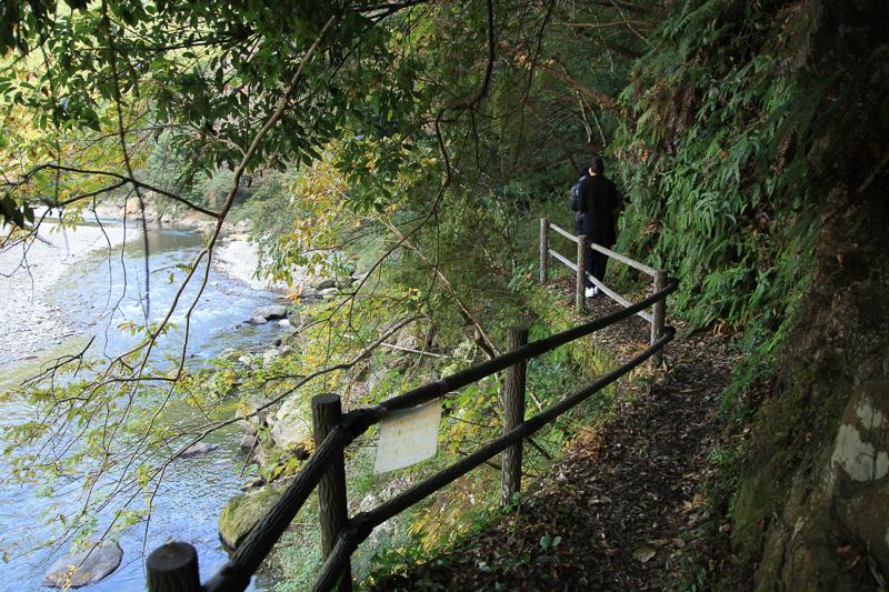 コースの大半は山と富田川に挟まれた狭い道。手すりのないところも多いので注意