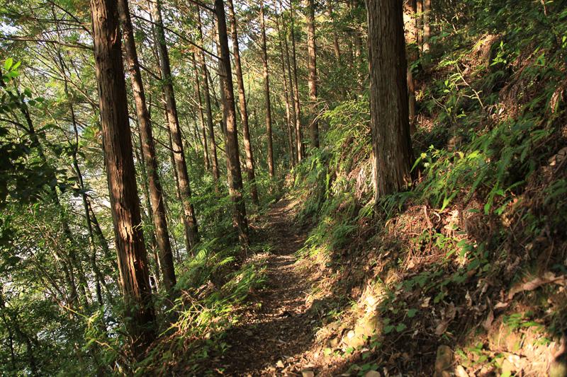 北郡越の前半、富田川沿いの道は高低差が少なく、気持ちよく歩ける