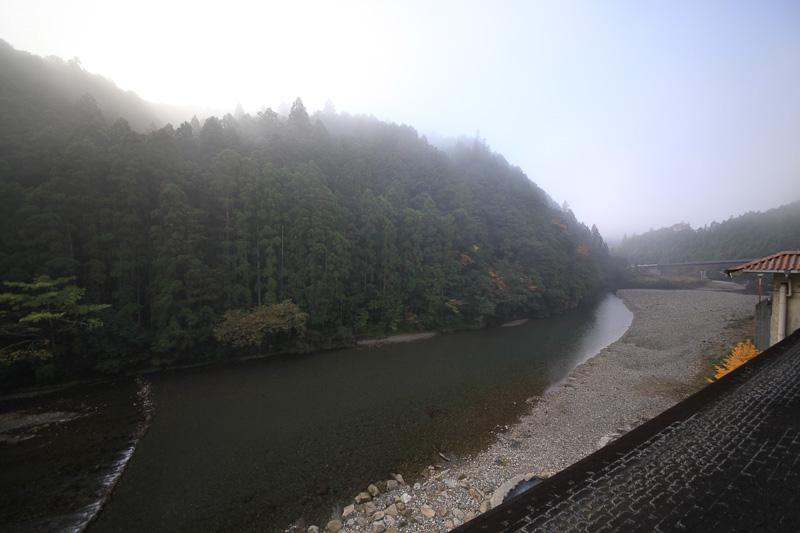 部屋からの眺望。杉の木立と大塔川のせせらぎが見える