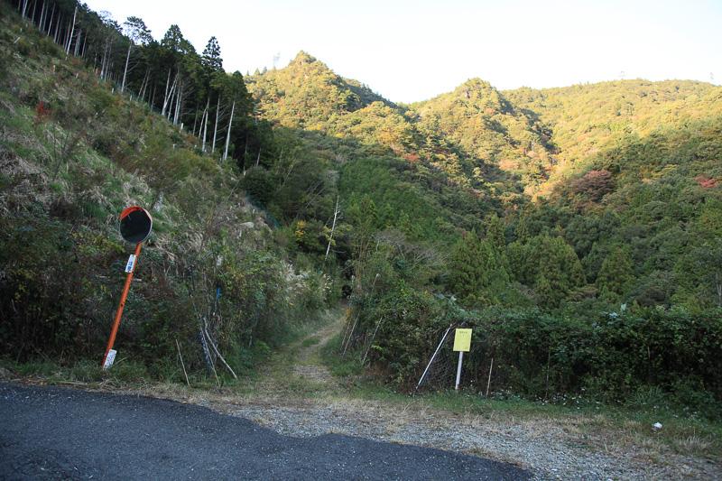 いったん林道に出る。熊野古道を拡幅舗装したもので、このような区間は世界遺産登録されていない
