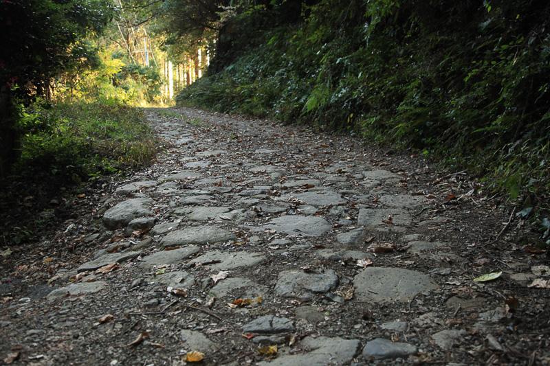 林道から外れ、近世の熊野古道の石畳に入る