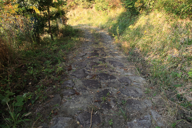 捻木の杉付近の石畳はしっかりと造られており、古道の雰囲気を色濃く残している