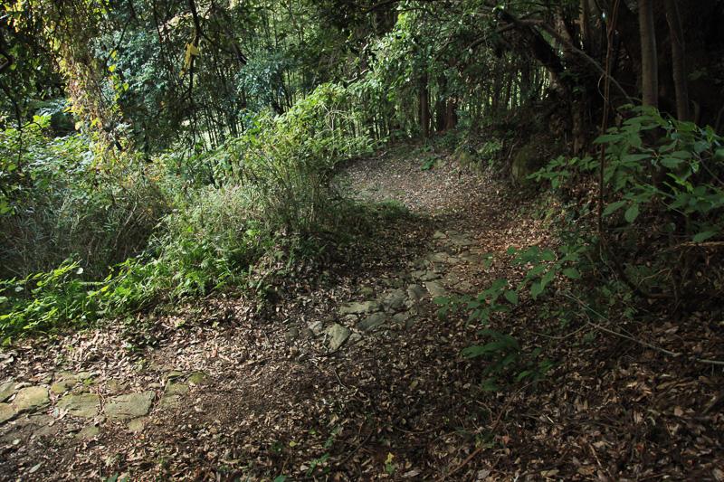 ところどころに石畳の道が残る。雨の跡などには滑りやすいので要注意だ