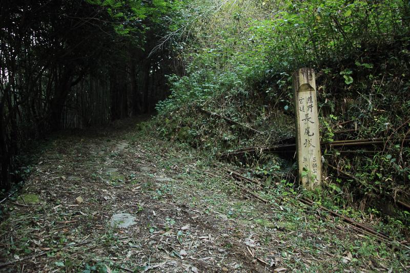 長尾坂の急な斜面がお分かりいただけるだろうか。この付近はかつても難所であったそうだ