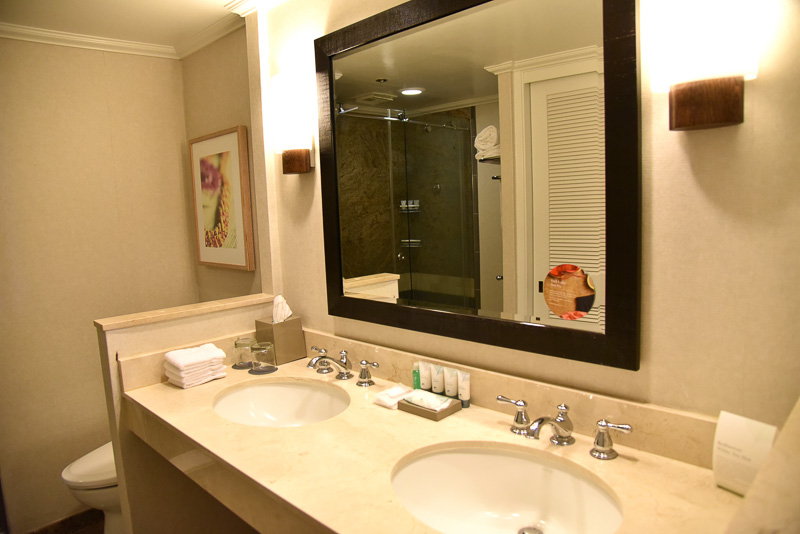洗面台にはシンクが2つあり、大きなミラーが1つ