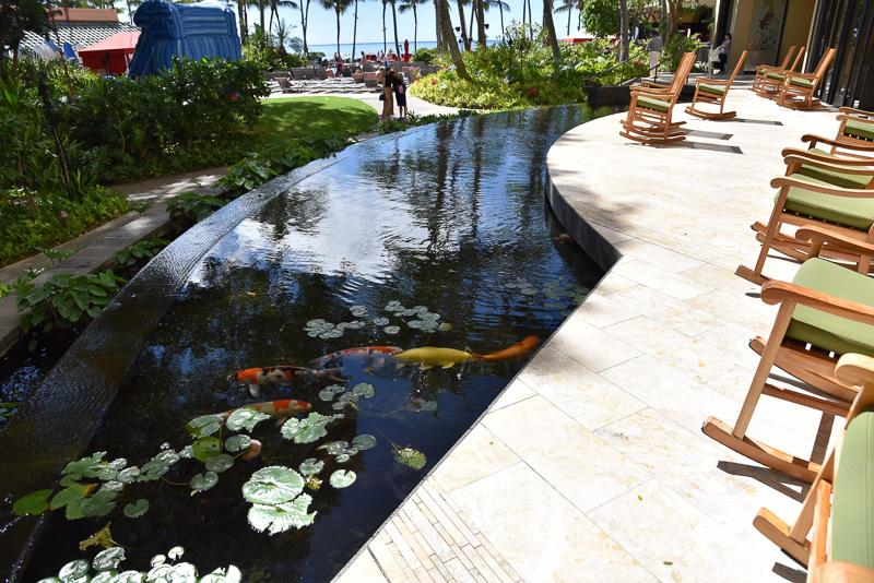 館内の池にはホノルル市の姉妹都市である長岡市から寄贈された錦鯉も放たれており、日本との友好関係も垣間見られる