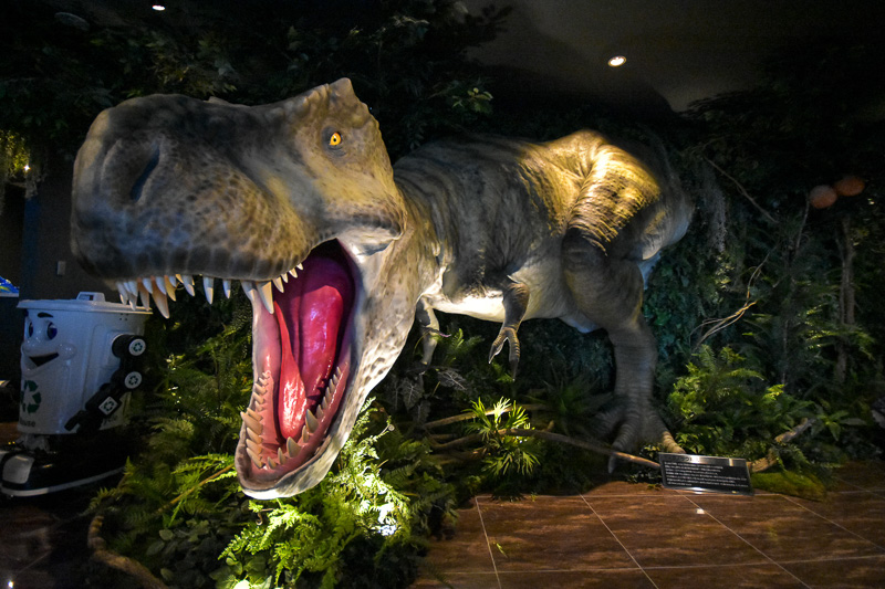 宿泊客を出迎える迫力のティラノサウルス模型