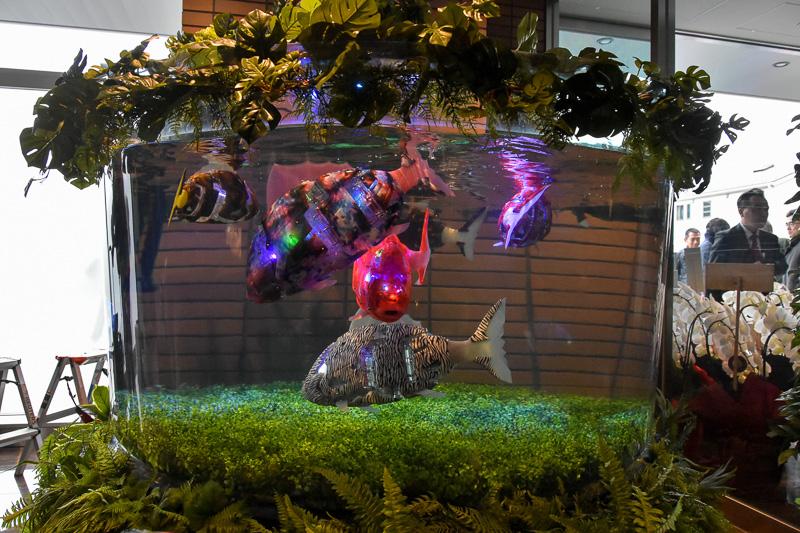 水槽には、数匹の魚が優雅に泳いでいる