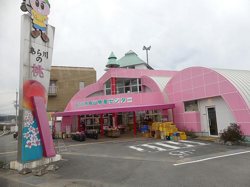 和歌山駅に向かうバスの中から見えたピンク色の建物「紀の川市桃山特産センター」
