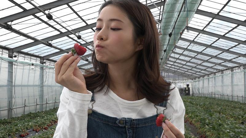 Challenge 101:メトロでイチゴ狩りに行こう!(東西線 西船橋駅/石井農園 Erdbeere )