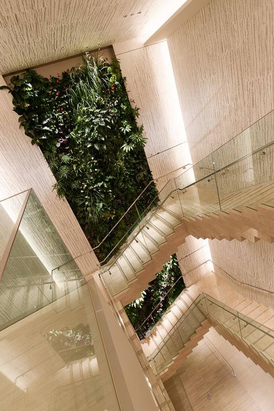 3階から5階の壁を貫く、パリ在住のアーティスト パトリック・ブラン氏による熱帯の森林をイメージした平面アート