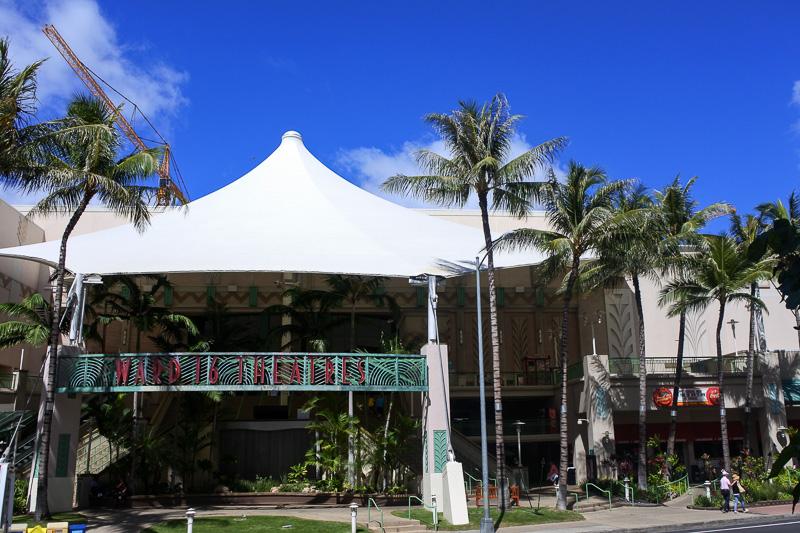 「ワード16シアター」や「デイブ&バスターズ」を併設する「ワード・エンターテイメント・センター」