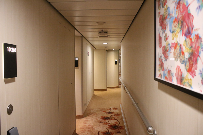 船内は中国・アジア風の絵画やじゅうたんで飾られている