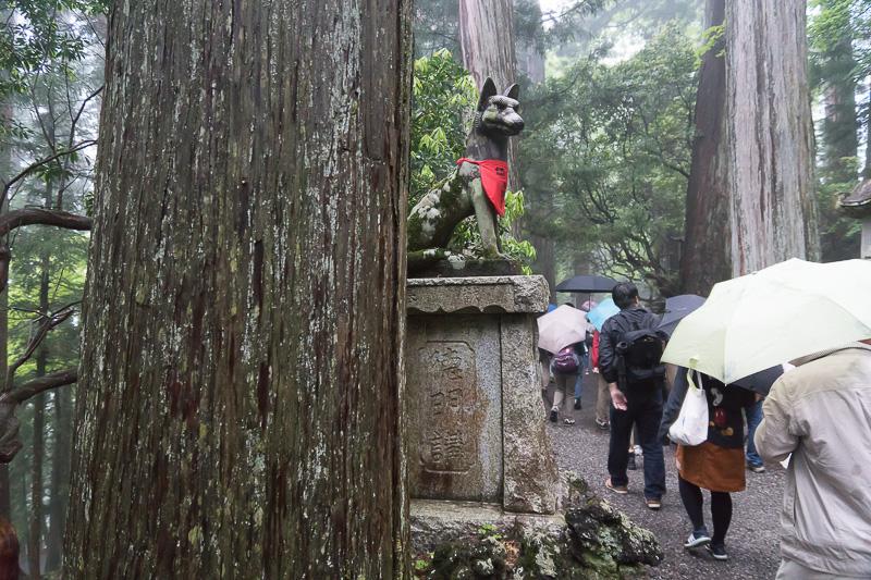 山犬と古木に見守られる参道を進む