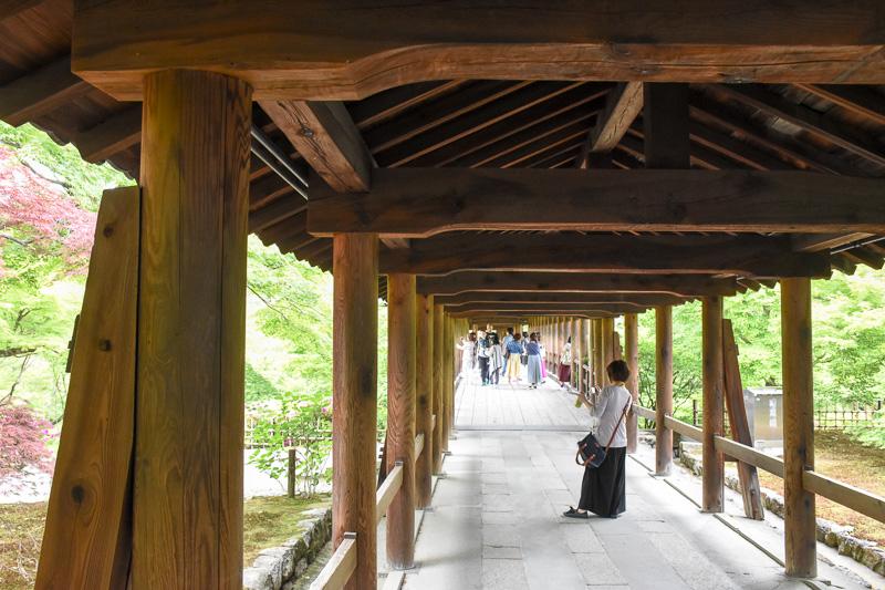 両脇をカエデの林に囲まれた通天橋。ちょうど目の高さに新緑(ないし紅葉)の生い茂る様が見えて美しい