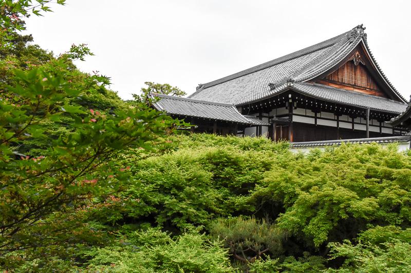通天橋から偃月橋(重文)を見上げたところ。偃月橋は日本で初めて屋根を付けた橋だという