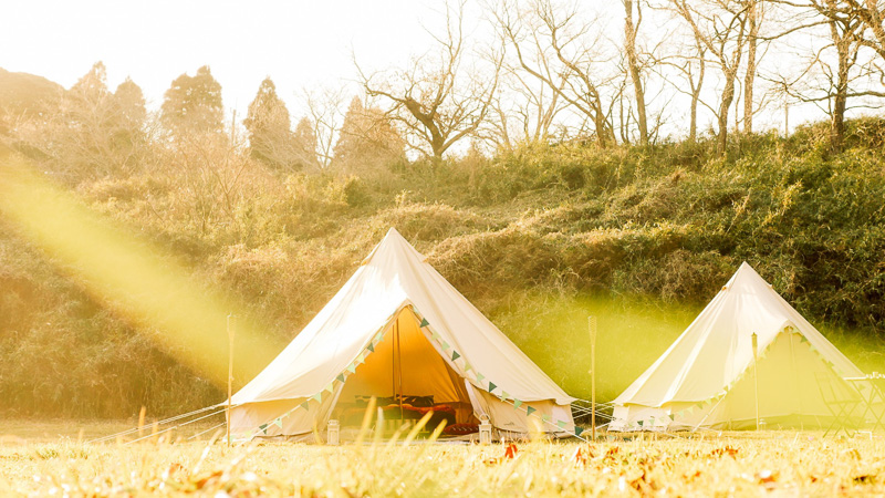 ベルギーのテントメーカーCanvascamp製のコットンテントを使用
