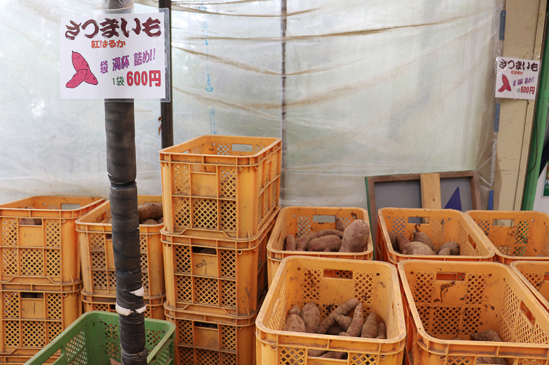 サツマイモも詰め放題で販売