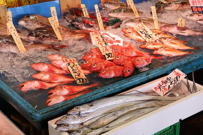 茨城県産の魚以外にも全国から魚が集まる