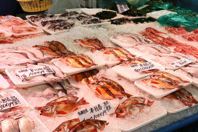 三陸など東北の魚も多い