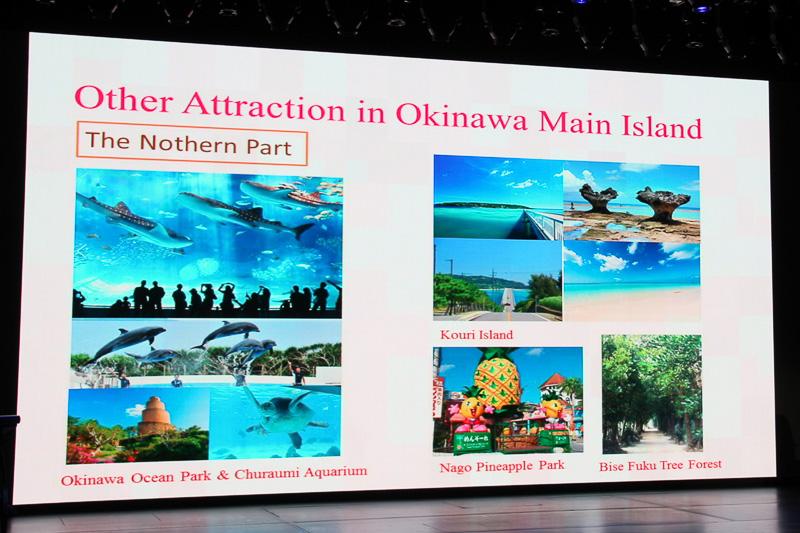 沖縄本島では美ら海水族館や絶景として有名な古宇利島(こうりじま)などをピックアップした