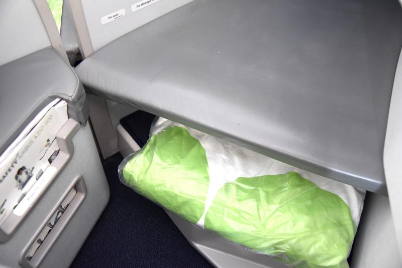 足元にも手持ちのカバンなどが入れられる場所が確保されている。搭乗時にはブランケットが収納されていた