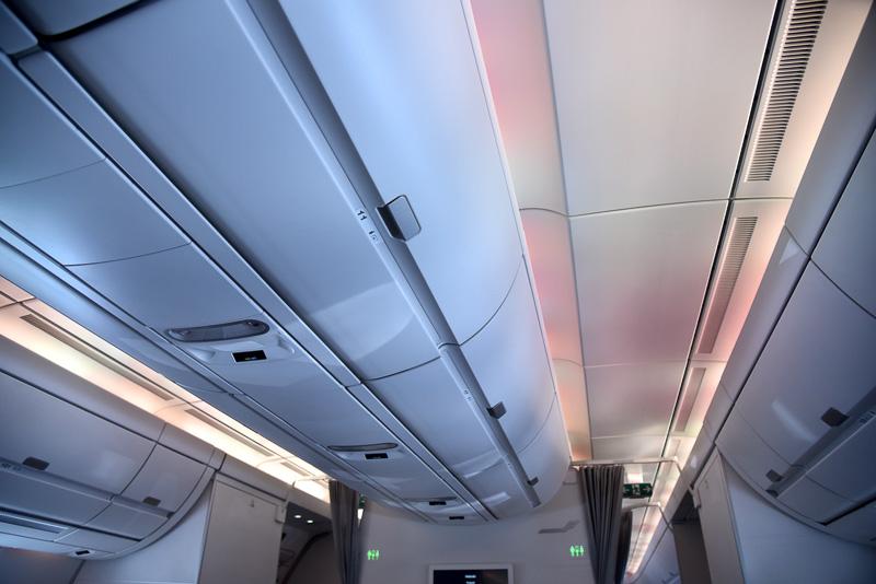 LEDを使ったオーロラのような演出の光が楽しめる