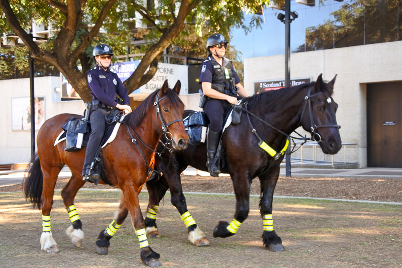 公園では飲み水も提供。そのまま飲んでも問題ない。また、警察官が馬でパトロールする光景も
