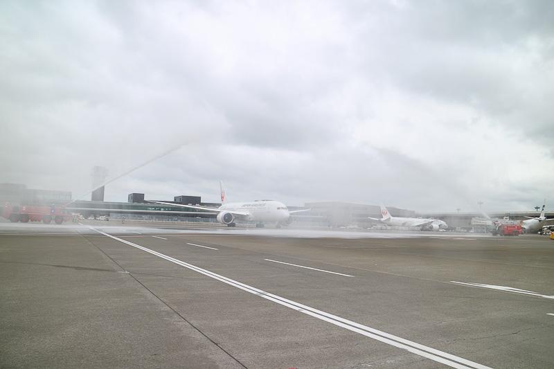 ボーイング 787-8型機はゆっくりと発進。あいにくの曇天と強風ではあったが、両脇の消防車が描くアーチをくぐっていく
