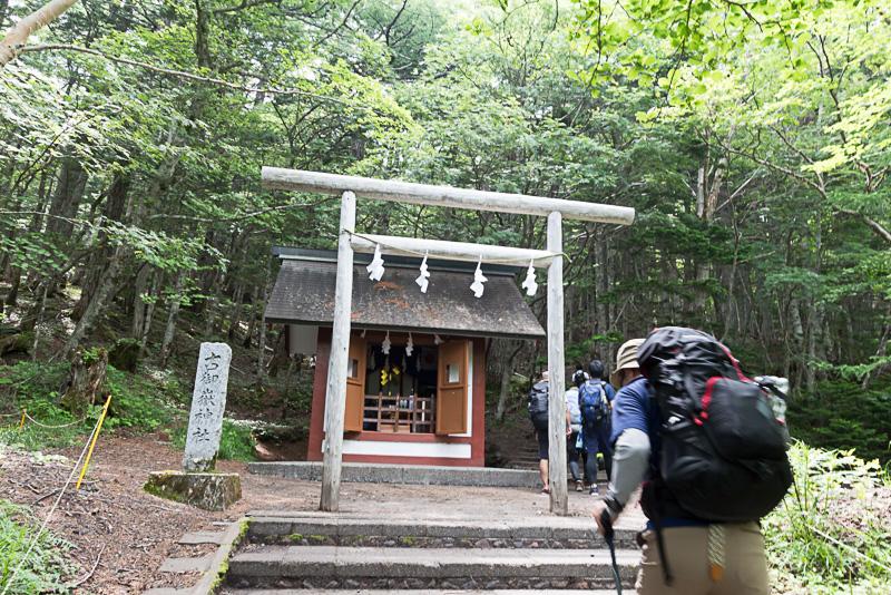 シラビソ、コメツガ、カラマツなどが生い茂る、古御嶽神社の脇を通り抜けていく