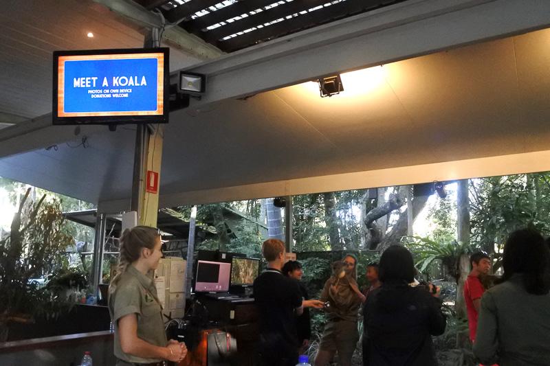「Koala Cudding photos」の前には荷物置き場とポジションなどを説明したボードなどがある。抱っこだけではなく、係員を囲んでの撮影も可能