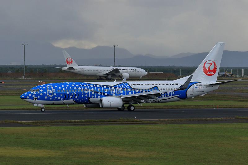 新千歳空港に米シアトル ボーイングフィールドからやってきたJTA「新ジンベエジェット」(登録記号:JA05RK)。日本初飛来となる