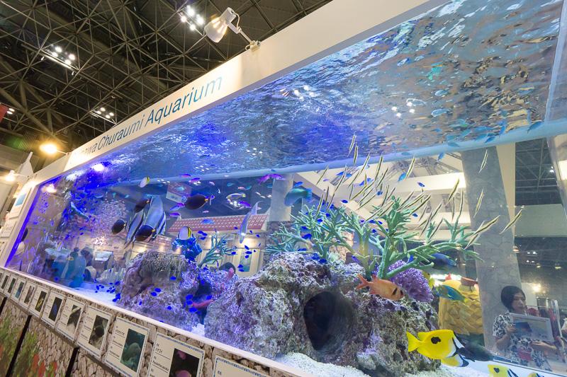 沖縄ブースに展示された熱帯魚が泳ぐ沖縄美ら海水族館の巨大水槽