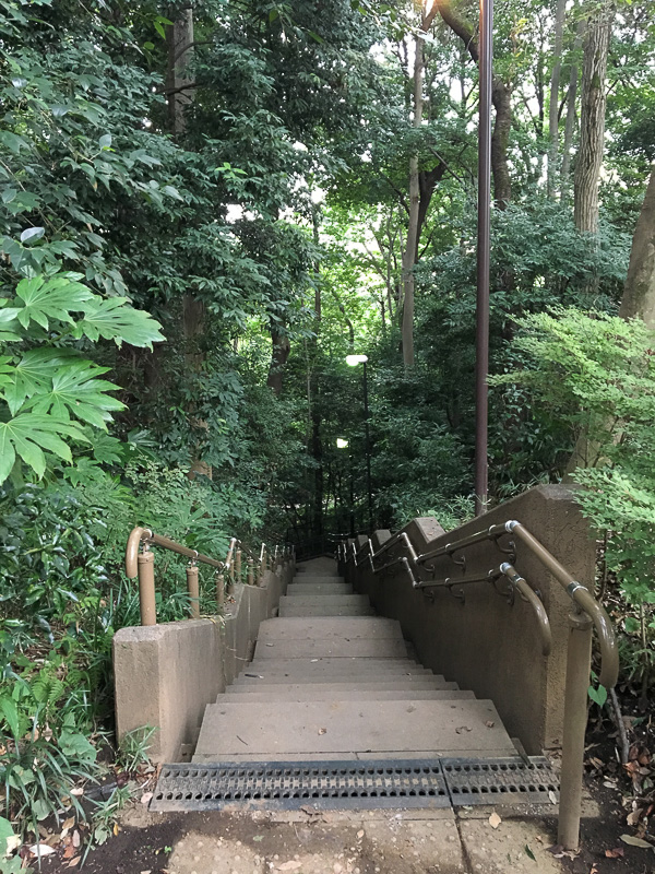 真姿の池湧水群に続く階段