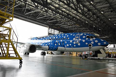 日本トランスオーシャン航空、地元小学生らを招いて特別塗装機「新ジンベエジェット」遊覧飛行を実施 日本トランスオーシャン航空が新ジンベエジェットの遊覧飛行を実施
